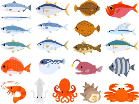 釣り大会中止及び代替イベントのご案内